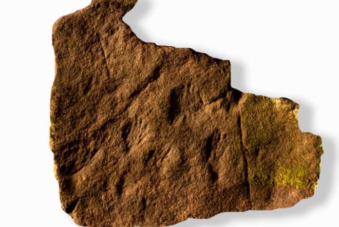 Gravados rupestres en forma de mans localizados en Esgos. Imaxes cedidas por Natalia Figueiras.