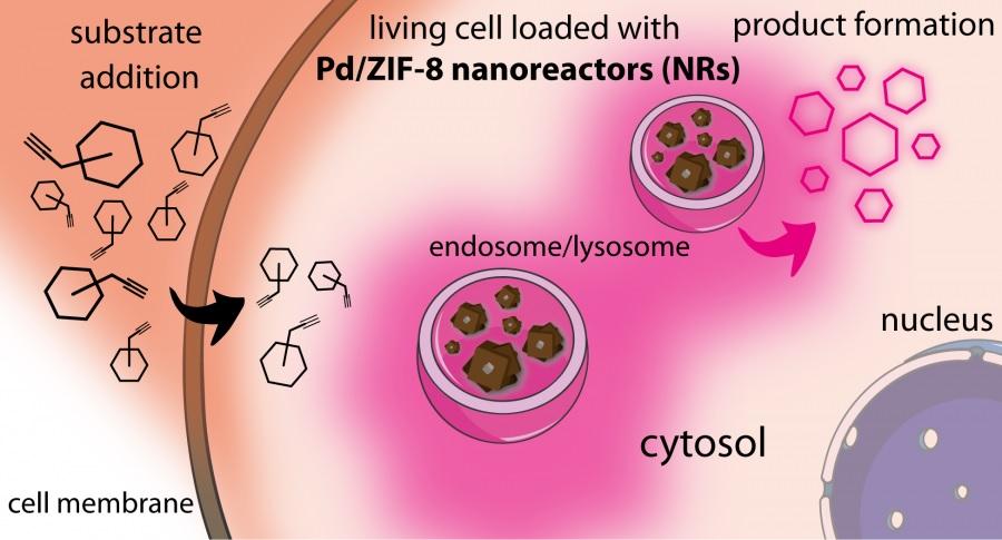 Detalle do traballo desenvolvido no CiQUS, no que se propón un novo nanosistema híbrido formado por un núcleo metálico de paladio e unha codia porosa baseada nunha rede metalo-orgánica. Fonte: CiQUS.