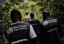 Traballadores da OMS no Congo, seguindo sobre o terreo o actual brote de ébola. Foto: OMS África.