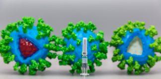 A vacina contra o coronavirus é a clave para recuperar a actividade previa á pandemia.