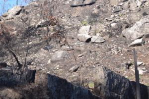 Vista do terreo calcinado arredor dos petróglifos de Pedra Moura. Foto cedida por Iago Pozo.