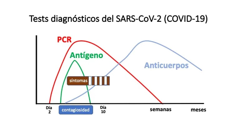 Esquema da capacidade de detección das probas diagnósticas do SARS-CoV-2. Fonte: Vicente Soriano/The Conversation.