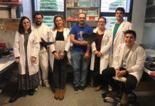 Investigadores do grupo Meigabiome do Inibic da Coruña. Foto cedida por Margarita Poza.