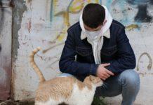 Os estudos realizados ata o momento descartan que os animais domésticos poidan transmitir a Covid-19.