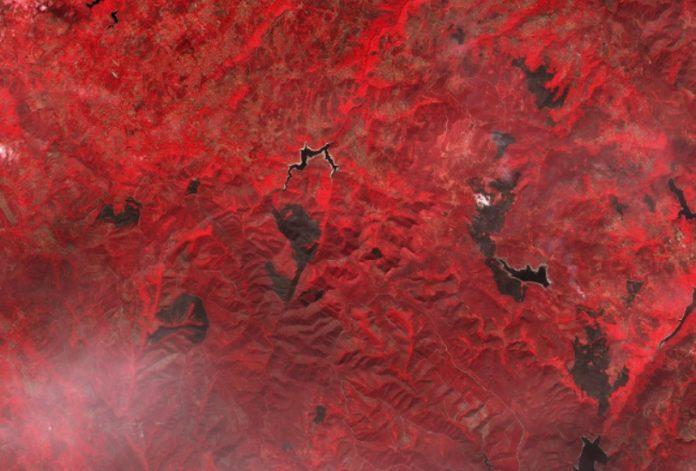 Os incendios do Macizo Central Ourensán, en imaxes tomadas polo satélite Sentinel-2, procesado con cor falsa que permite distinguir as áreas queimadas do resto da vexetación. De esquerda á dereita, incendios en Maceda, Vilar de Barrio, Chandrexa de Queixa, Vilariño de Conso e Manzaneda. Fonte: Sentinel Hub.