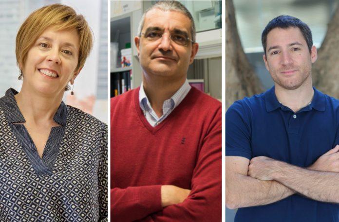 Marisol Soengas, Xosé Bustelo e Manuel Irimia.