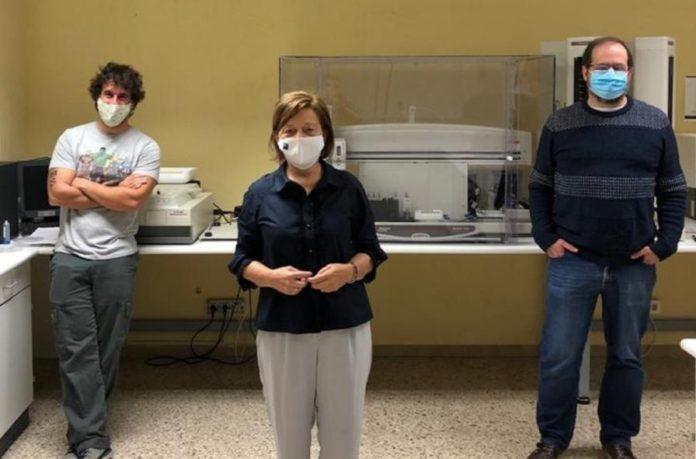Pablo Cabezas, Laura Sánchez Piñón e Juan Rubiolo, investigadores do grupo ZebraBioRes. Foto: USC.