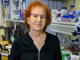Margarita del Val é viróloga do CSIC e está a realizar un amplo labor de divulgación desde o comezo da pandemia. Foto: CSIC.