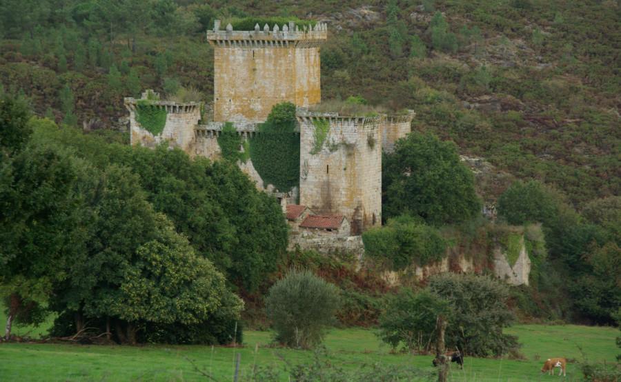 Vista do castelo de Pambre desde o sur. Foto de Santiago Vázquez Collazo.