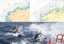 Área de limitación de navegación para os veleiros, establecida polas Capitanías de Ferrol e A Coruña. Fonte: Mitma.