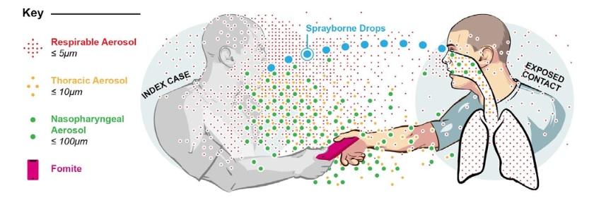 Esquema que amosa os diferentes tamaños das pingas respiratorias e os fómites (obxectos nos que se poden depositar partículas co virus) na comunicación persoal. Á esquerda, persoa infectada, e á dereita, persoa exposta ao virus. Fonte: Milton (2020).