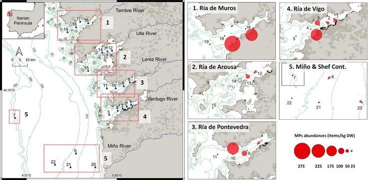 Cantidade de fragmentos atopados nos sedimentos en cada zona de mostraxe. Fonte: IEO.