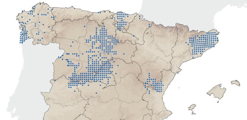 Áreas con expansións de visóns no territorio español. Fonte: Miteco.