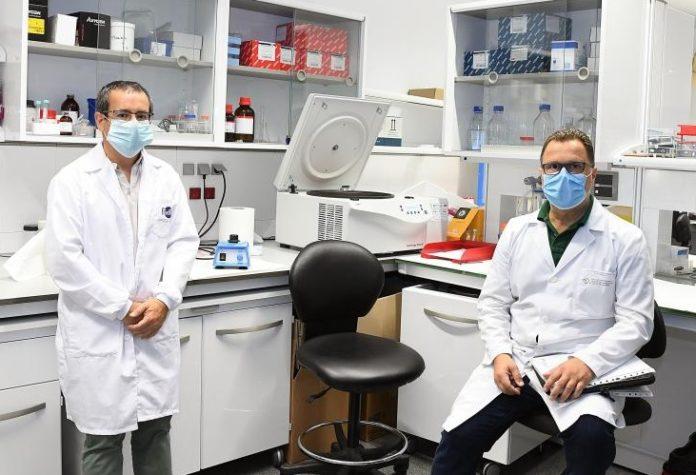 Os investigadores Antonio Salas (esquerda) e Federico Martinón. Foto: Santi Alvite/USC.