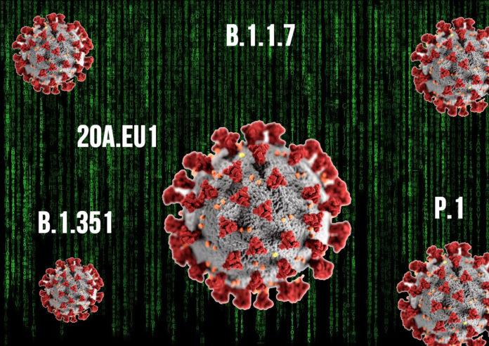 Un maior número de infeccións incrementa o risco de que emerxan novas variantes do SARS-CoV-2.
