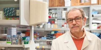 Vicente Larraga é investigador no Centro de Investigacións Biolóxicas Margarita Salas (CIB-CSIC). Foto: CSIC Comunicación.