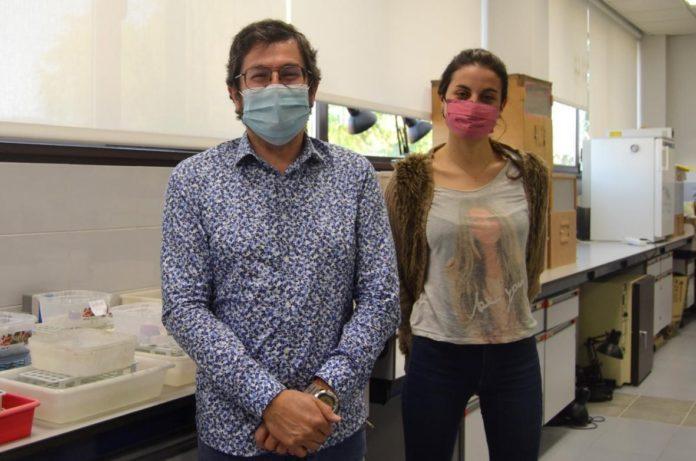 Os investigadores da UVigo Adolfo Cordero e Anais RIvas son dous dos autores do artigo. Foto: Duvi.