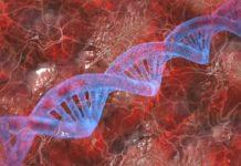 O desenvolvemento da tecnoloxía de ARNm coas vacinas permite explorar novas opcións co uso de nanopartículas para tratar outras enfermidades. Imaxe: Pixabay.