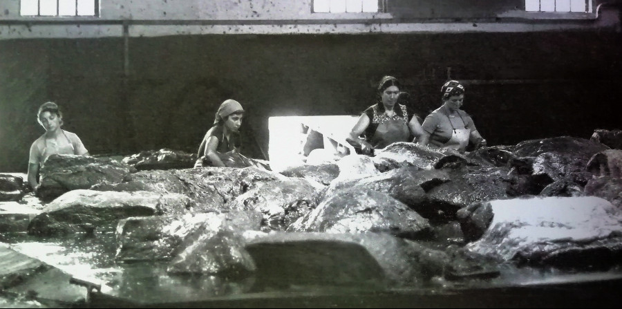 Junquera Domínguez Senlle, María Jesús Beiro, Angélica Outes Carballo e Maruja do Carteiro, en 1981, cortando carne de balea. Arquivo de Álex Aguilar.