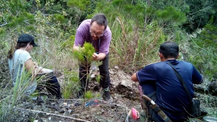 Traballo de campo en Borneo. Foto: Duvi-