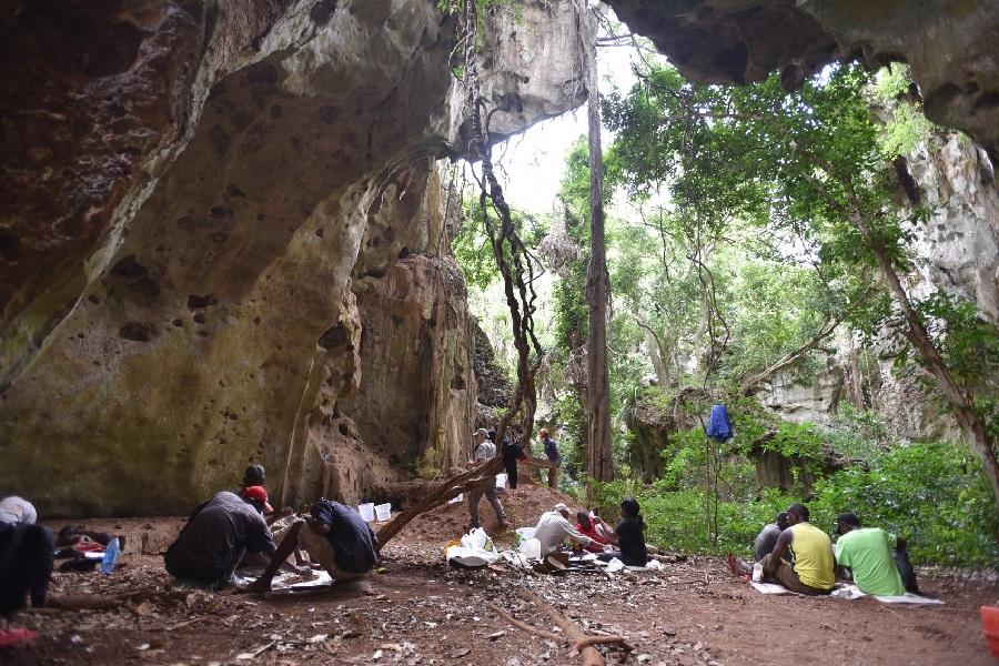 Xacemento de Panga ya Saidi, en Kenya. Foto: Instituto Max Planck.
