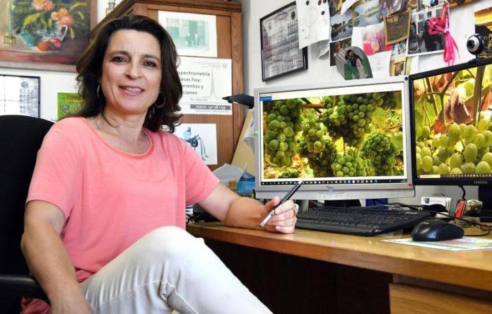 Marta Lores, catedrática de Química Analítica, coordina o proxecto NeoGiANT. Foto: Santi Alvite/USC.
