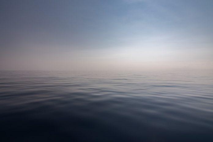 Diversos estudos coinciden en sinalar un movemento global de especies do océano cara aos polos. Foto: Pixabay.