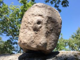 Cabeza antropomorfa de pedra localizada nas escavacións de niveis inferiores. Imaxe cedida por Tino Feijoo (Concello de Allariz).