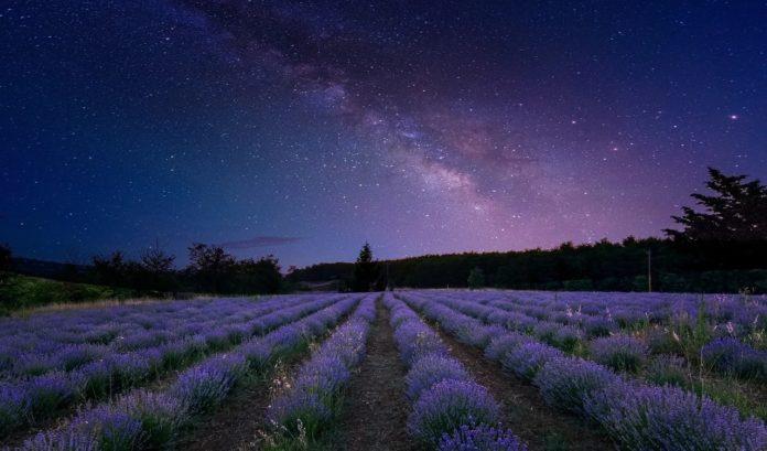 Ademais doutros fenómenos astronómicos, o ceo de xullo permite observar a Vía Láctea no seu esplendor. Imaxe: Dreamy Photos / Pixabay.