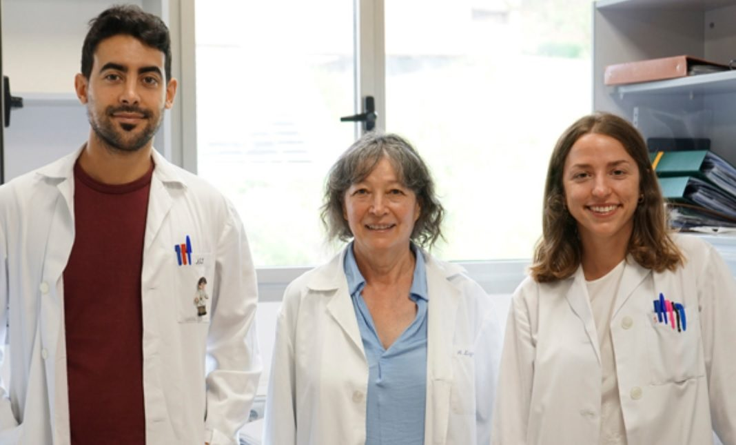 Azucena Esparís (centro), líder do equipo e responsable do traballo, xunto a Adrián Sánchez, asinante principal do artigo, e Sofía Matilla, outra das autoras. Foto: Universidade de Salamanca.
